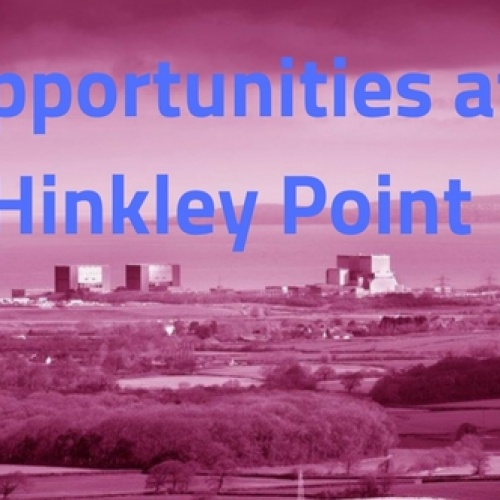 Hinkley Point Opportunities